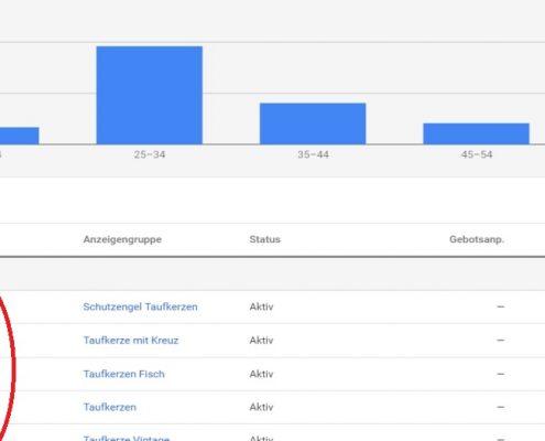 Google Ads Demografische Merkmale
