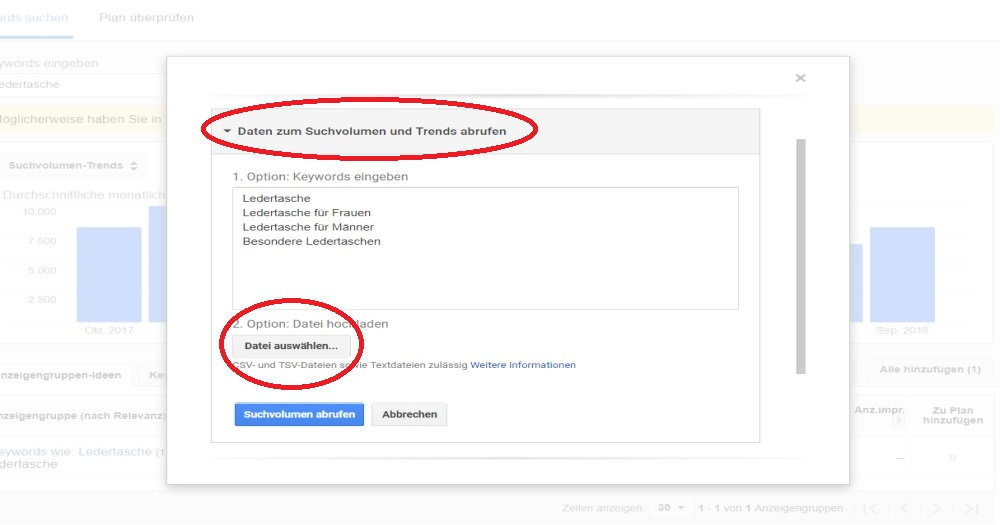 Google Ads Keywordplaner